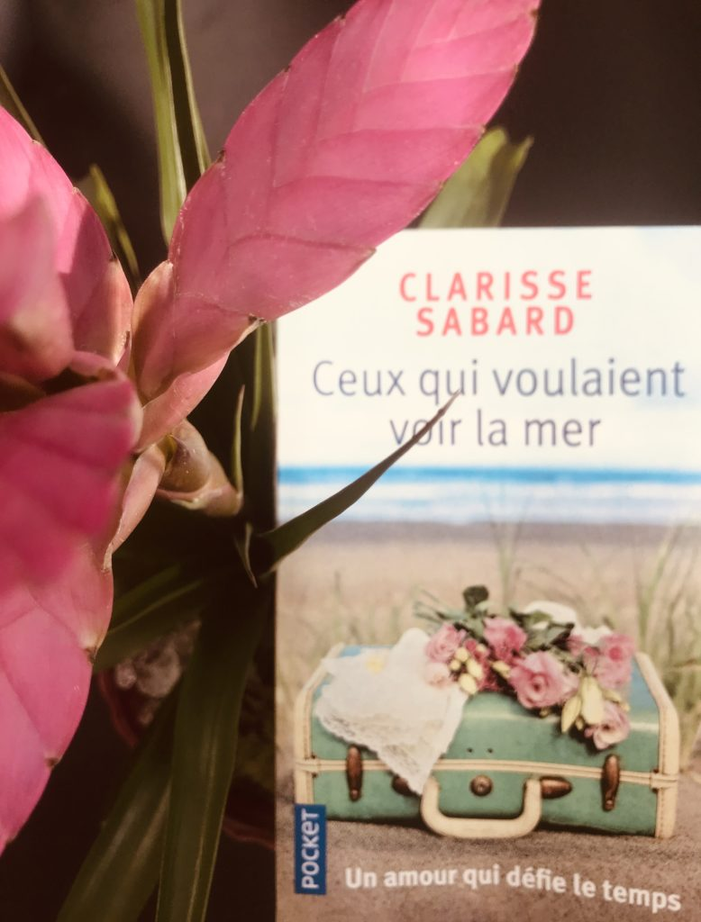 avis lecture Clarisse Sabard