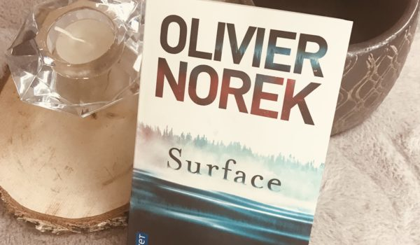 avis lecture olivier Norek Surface
