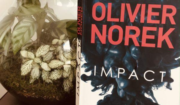 avis lecture olivier norek